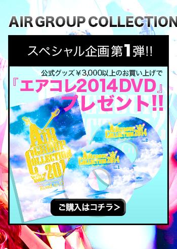 AIRGROUPCOLLECTION2015TheFinal 開催記念『エアコレ2014完全収録DVD』プレゼント!ご購入はコチラ